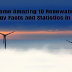 Renewable Energy Facts and Statisticsindianmemoi.com